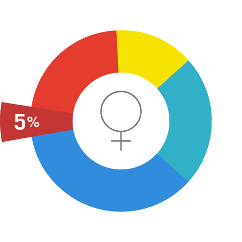 A pie chart representing all women of reproductive age, with a dark red 5% wedge emphasized.